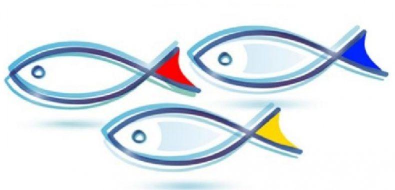 MADR – Sesiune deschisă pentru proiecte pescuit și afaceri maritime