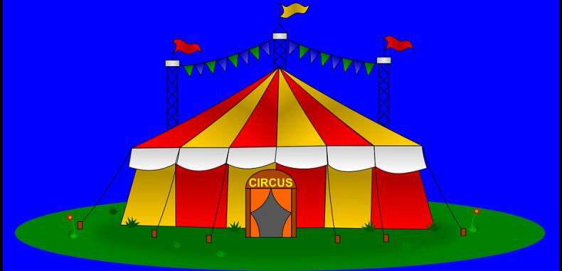 Cronica unui număr de circ ratat